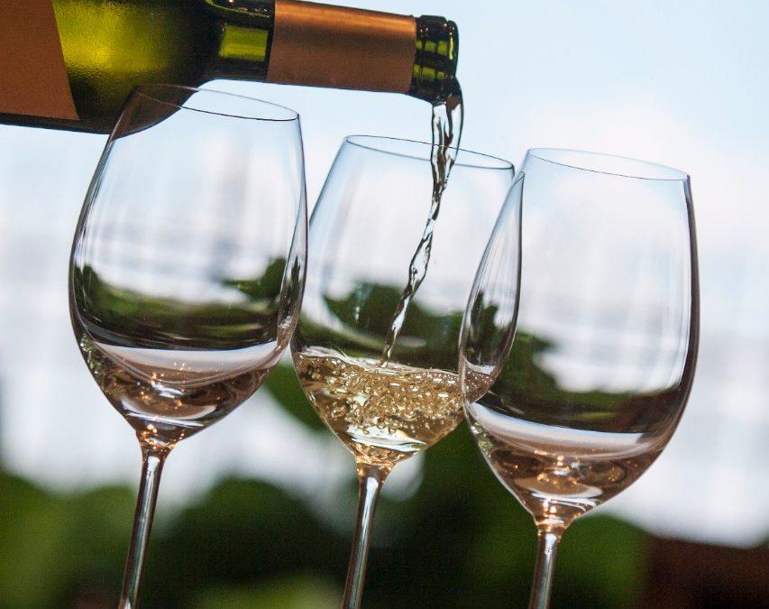 Mendoza y COVIAR abren un ciclo para promover el turismo del vino