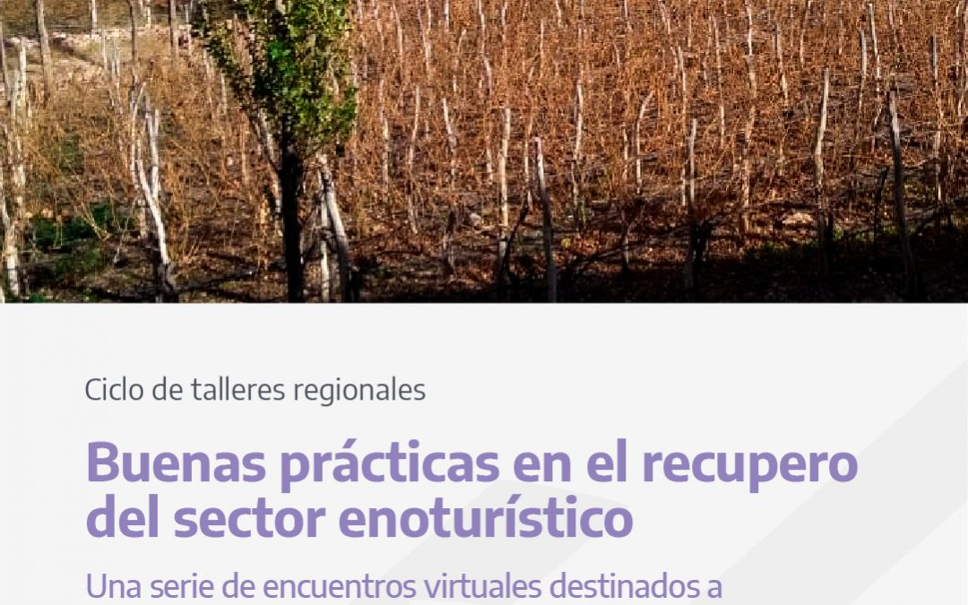 Lanzan un ciclo para capacitar a bodegas y viñedos de todo el país sobre el Protocolo COVID19