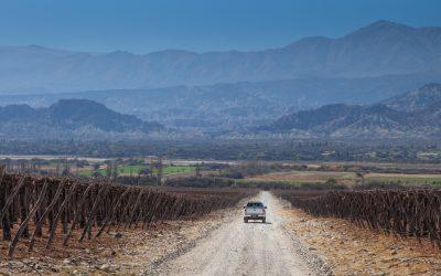 Nación, provincia, municipios y COVIAR lanzan un concurso para el desarrollo del turismo del vino en Catamarca