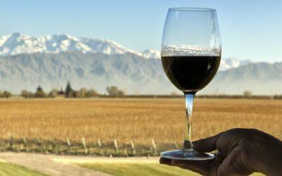 El turismo del vino consolida su estrategia federal de reactivación