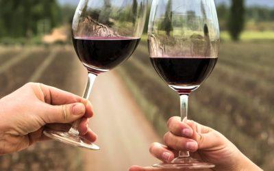 La elaboración de vino y el enoturismo podrán acceder a una asistencia mayor para enfrentar la crisis del COVID19