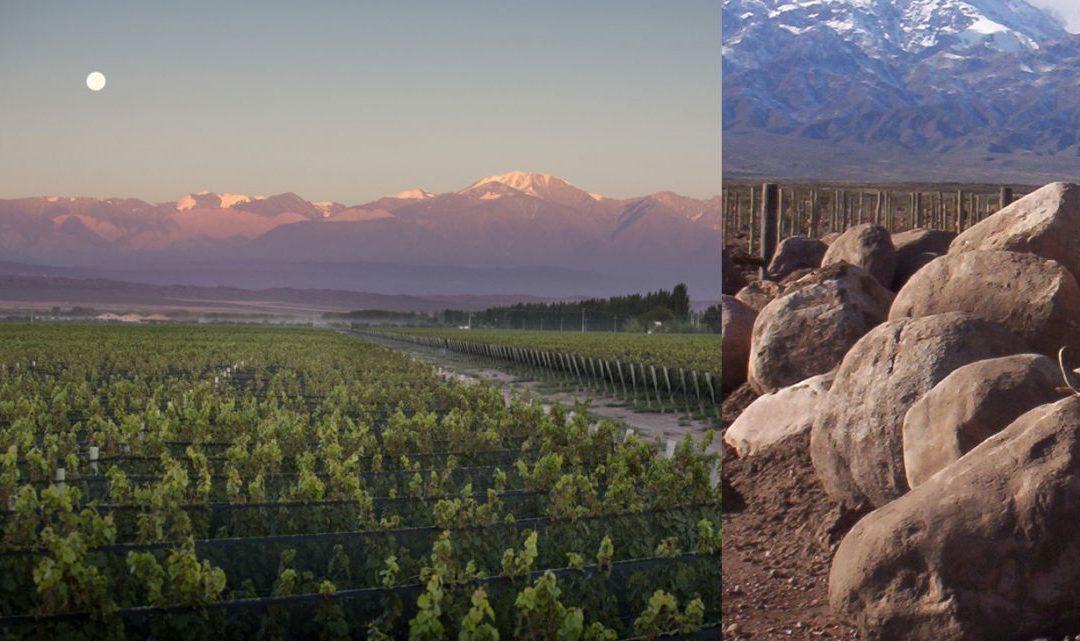 COVIAR firmó un convenio con el BID para financiar estudios de caracterización de regiones en Mendoza, San Juan y Salta