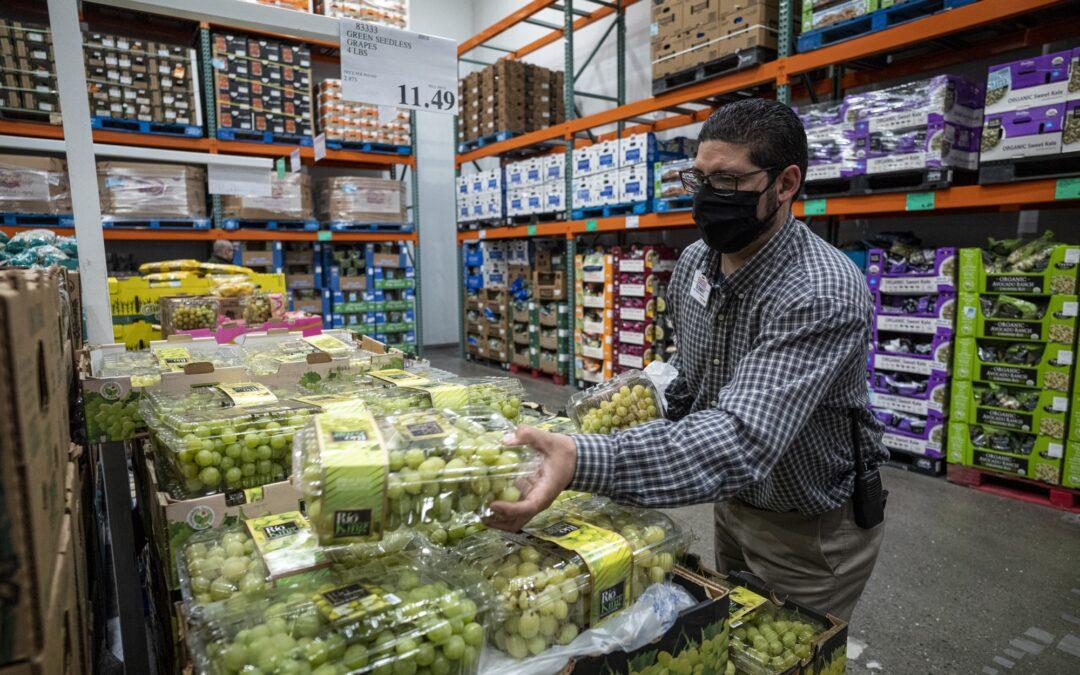 Oportunidad para la uva en fresco argentina en Estados Unidos