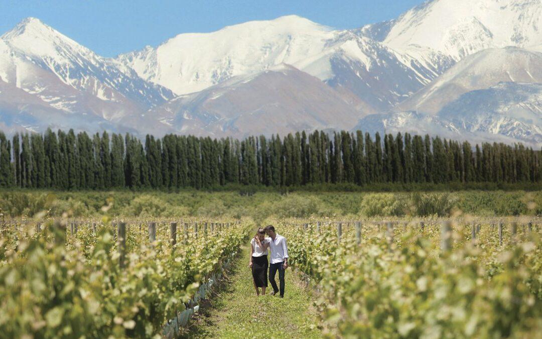 Argentina lanza un plan internacional para salir a buscar turistas del vino